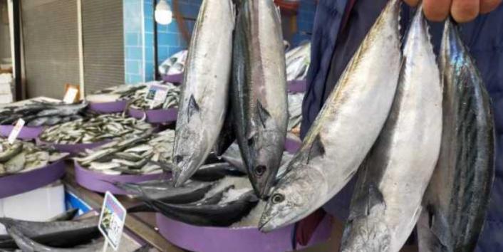 Balık Fiyatları İkiye Katlandı