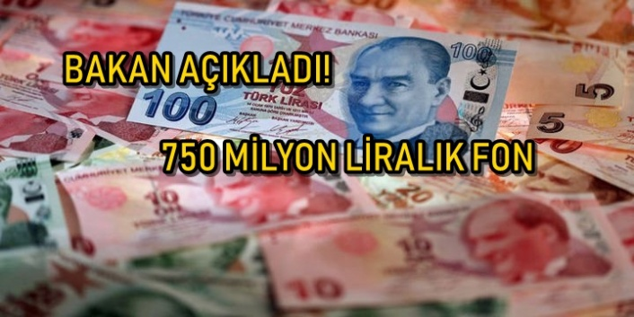Türkiye Kalkınma Fonu Kuruldu