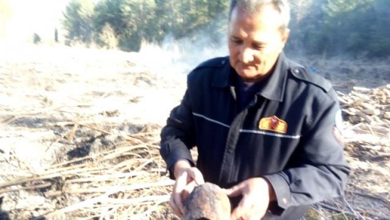 Seydikemer'de Yanmak Üzere Olan Kaplumbağa Son Anda Kurtarıldı