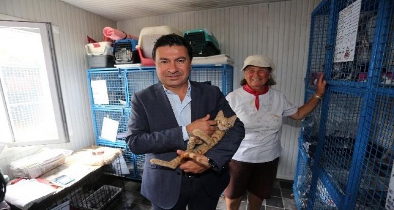 Bodrum'daki 20 Klinik 3 Ay Ücretsiz Hizmet Verecek