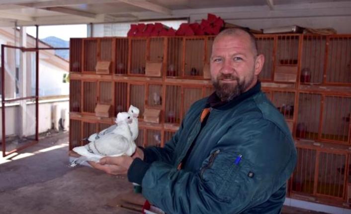 Marmarisli Turizmcinin Güvercin Aşkı Sınırları Aştı