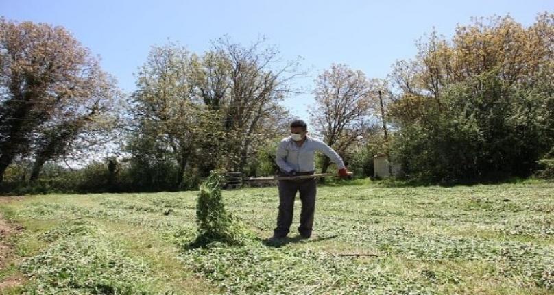 Muğla'da Çiftçiler Üretim için Çalışıyor