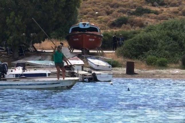 Bodrum Denizinde Köpek Balığı Katliamı!
