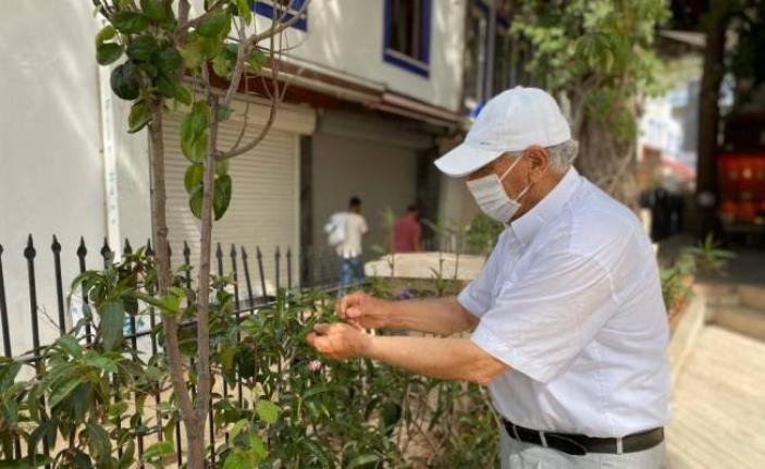 Sokağa Çıkma İznini Çiçek Ve Ağaçların Bakımı İçin Kullanıyor