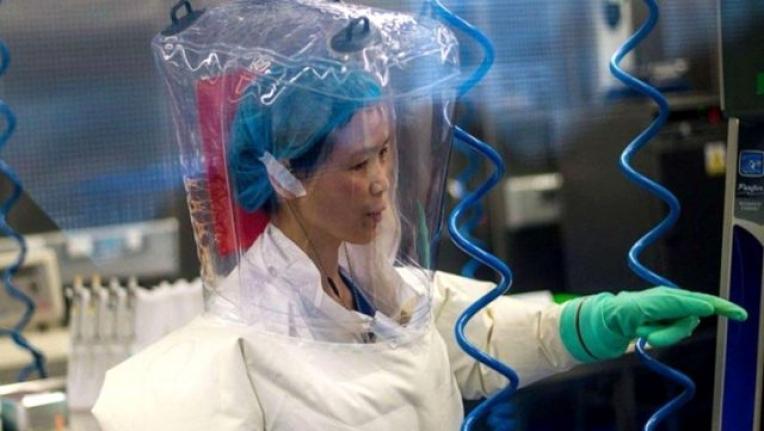 'Yarasa Kadın'dan Uyarı: Koronavirüs Buz Dağının Görünen Yüzü