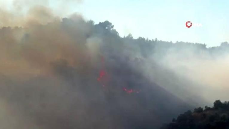 Bodrum'un Mazı İlçesinde Orman Yangını Başladı