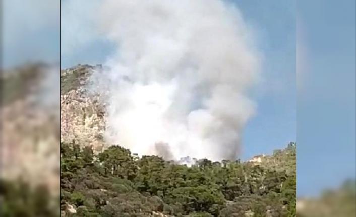 Datça'da Orman Yangını Çıktı!