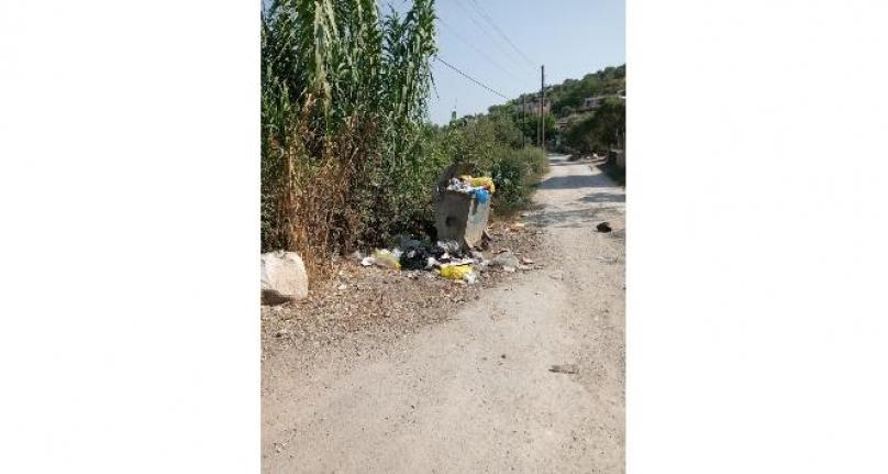 Milas'ta Mahalleli Toplanmayan Çöplere İsyan Etti