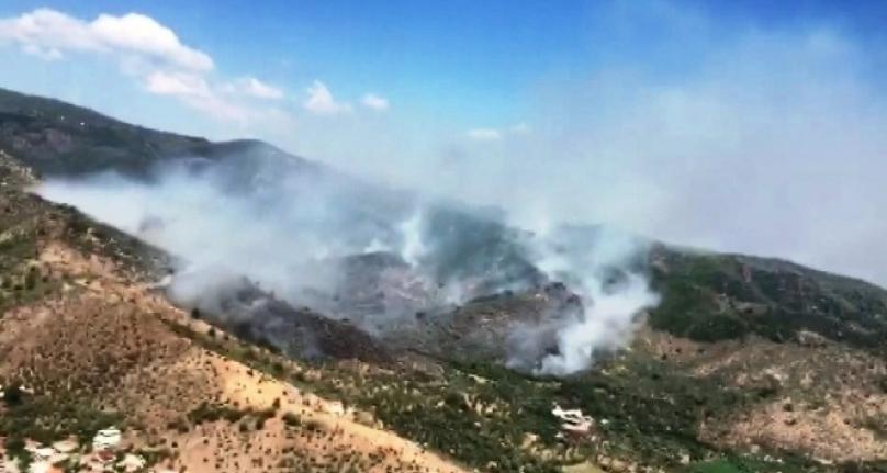 Milas'taki Orman Yangınına Müdahaleye Devam Ediliyor