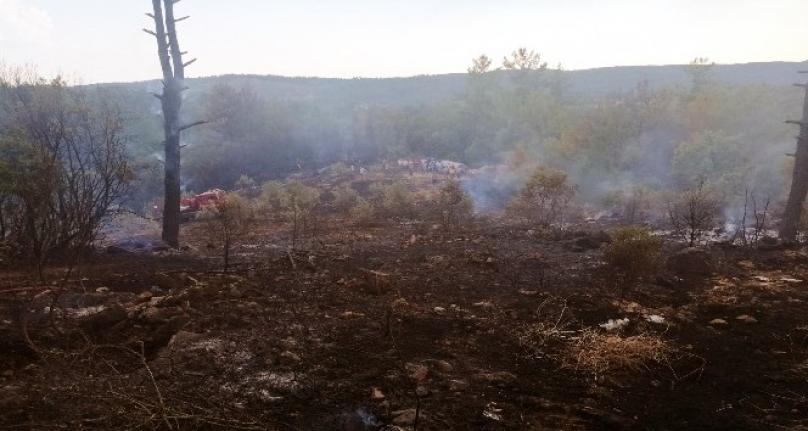 Ula ve Menteşe'de Çıkan Yangınlar Söndürüldü