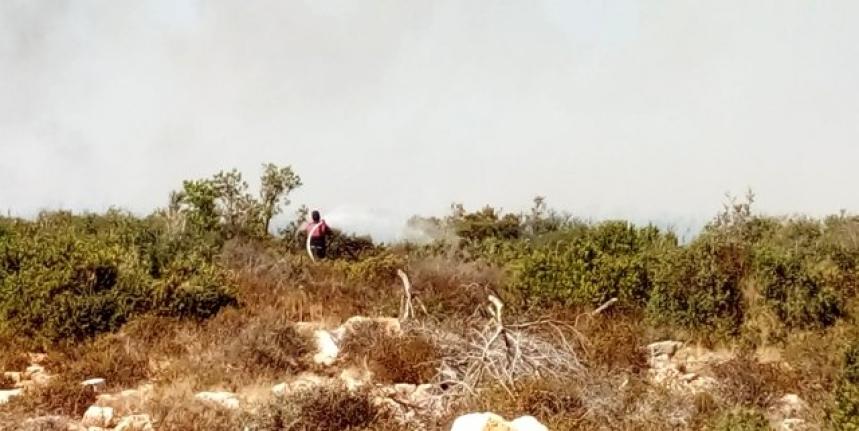 Didim'de Makilik Alanda Yangın Çıktı