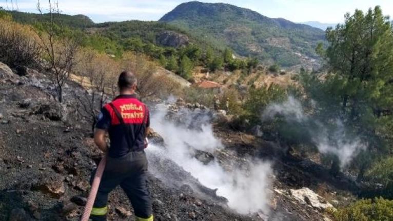 Datça'da Çıkan Yangın 10 Dönüm Kızılçam Ormanını Küle Çevirdi