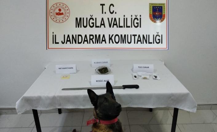 Jandarmadan Bodrum'da Uyuşturucu Operasyonu: 12 Kişi Gözaltına Alındı