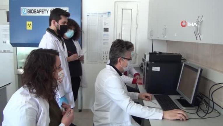 Muğla Sıtkı Koçman Üniversitesi Sars-CoV-2'yi Durduran Bileşik Bulundu