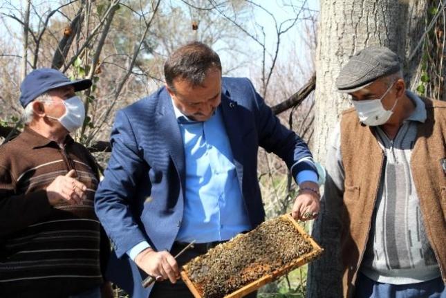 Arılar Çiçekle Buluştu, Yetiştiriciyi İlaçlama Korkusu Sardı
