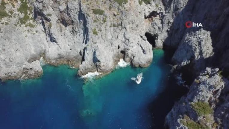 Gökova Körfezi'nde Nesli Tükenme Tehlikesinde Olan 5 'Akdeniz Foku' Görüldü