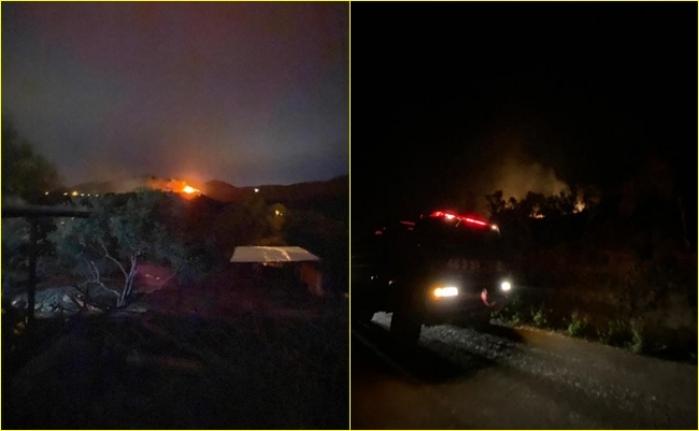 Milas'ta Ormanlık Alanda Çıkan Yangın Korkuttu