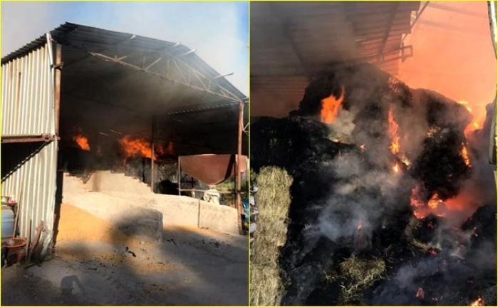 Milas'ta, 200 Ton Fiğ ve Arpa Olan Samanlıkta Çıkan Yangın 2 Saatte Güçlükle Söndürüldü