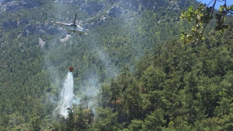 Datça'da Çıkan Orman Yangınında 3 Dekarlık Alan Zarar Gördü