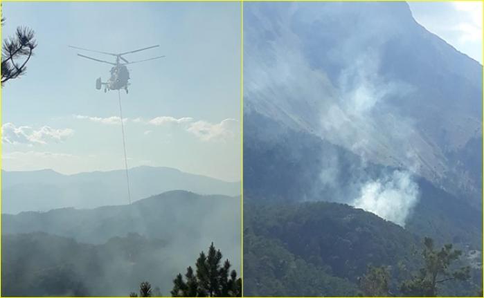 Fethiye'de Yıldırım Düşmesi Sonucu Çıkan Orman Yangınında 5 Dekarlık Alan Zarar Gördü