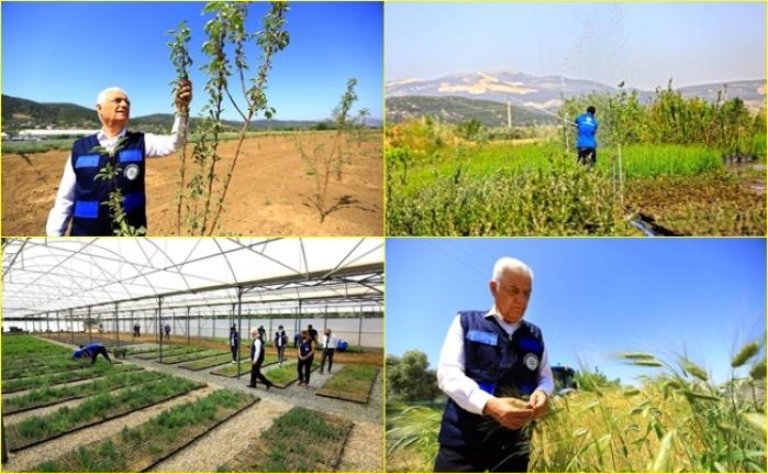 Muğla Büyükşehir Belediyesi, Akıllı Tarım Çiftliği'nde Çiftçilere Eğitim Verecek