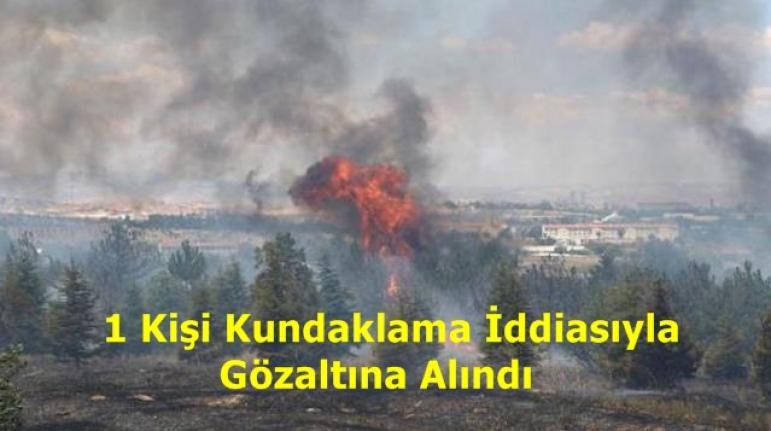 Ankara'da Atatürk Orman Çiftliği'nde Korkutan Yangın!