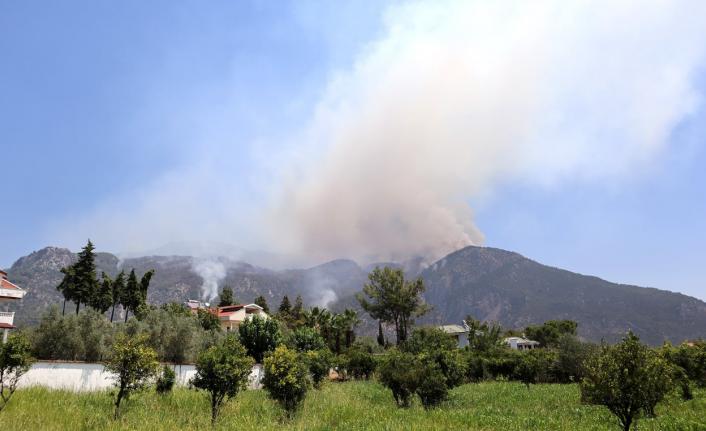 CHP'li Erbay: Köyceğiz'e Acil Havadan Yardım Gerekiyor