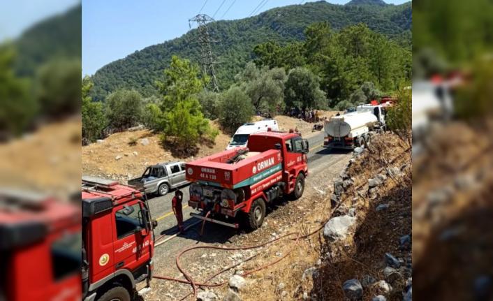 Köyceğiz'deki Yangın Çabuk Fark Edildi, Hemen Söndürüldü