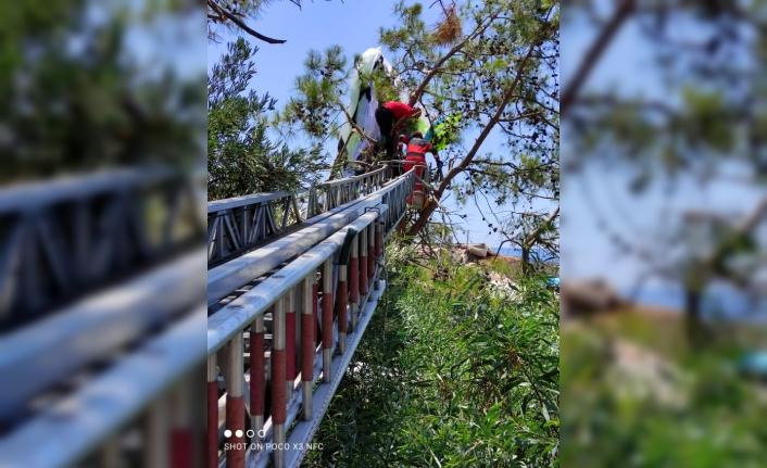 Yamaç Paraşütçüleri Ağaçta Asılı Kaldı İtfaiye Kurtardı