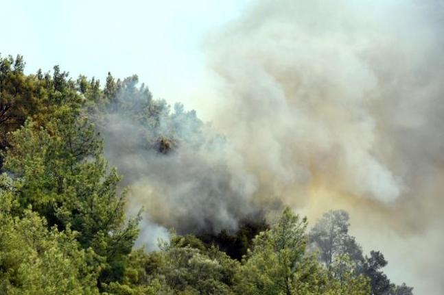 Dalaman'daki Yangın Kontrol Altında