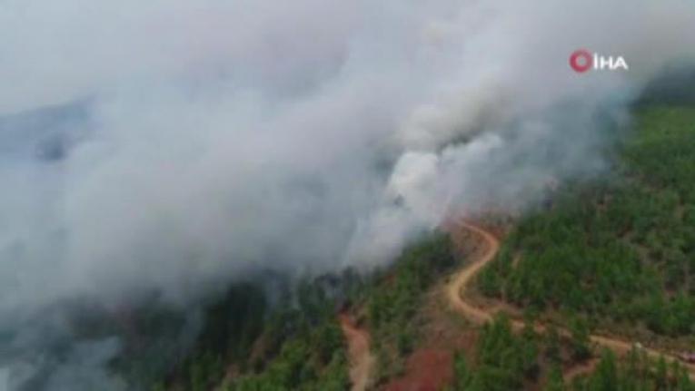 Köyceğiz Sazak'ta Alevler Yeniden Yükseldi