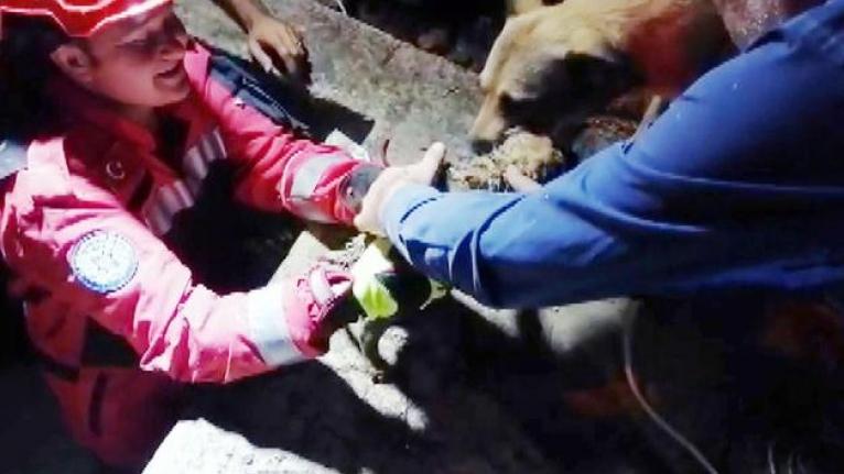 Kavaklıdere'de Sulama Kanalına Düşen Köpek Yavrusundan Mutlu Haber!