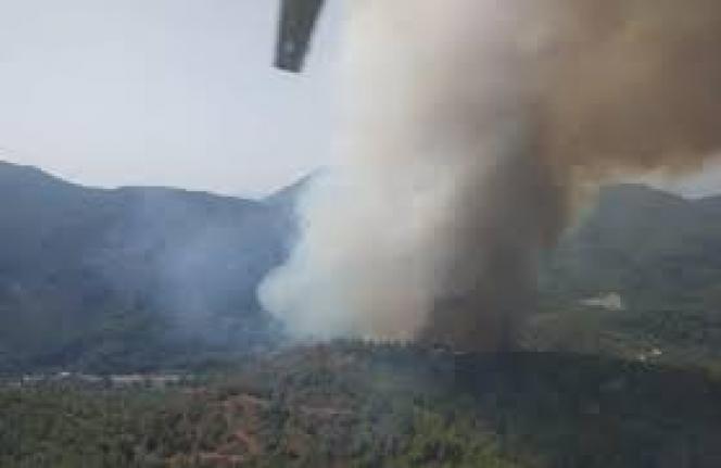 Marmaris'te Orman Yangını!