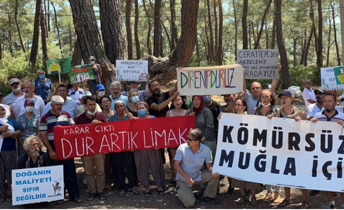 Milas'taki Akbelen Ormanları'nda Eylemcilerin Mücadelesi Sürüyor