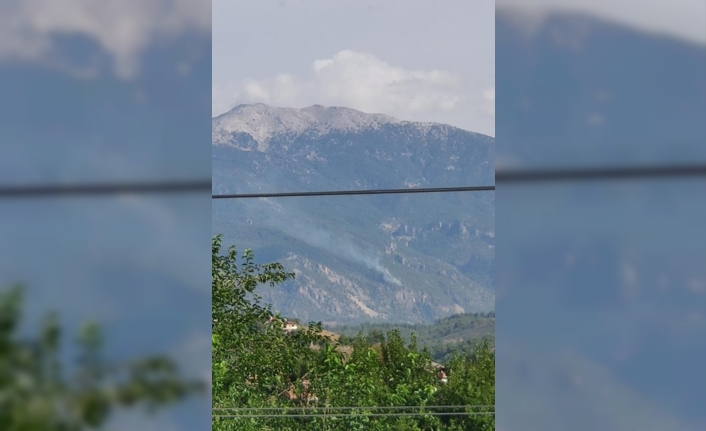 Ula'daki Orman Yangını Söndürüldü