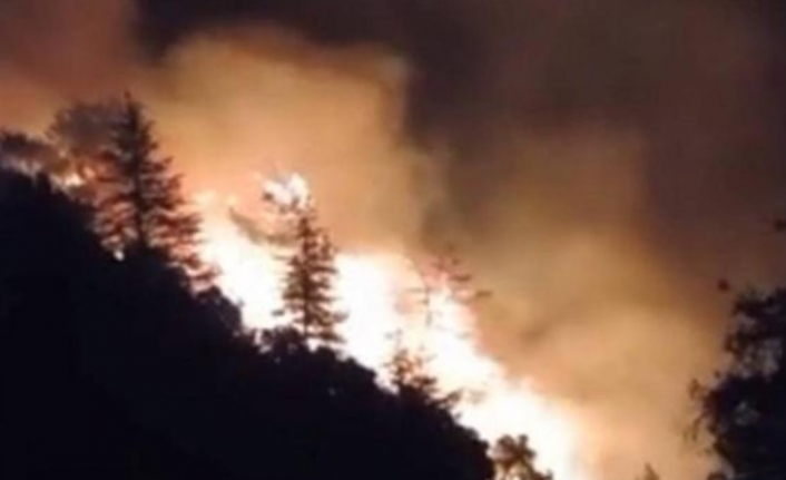 Kemer'de Orman Yangını: Müdahale Sürüyor