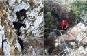 Milas'ta Kayalıklarda Mahsur Kalan 3 Keçi,...