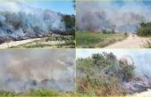 Ortaca'da Dalaman Çayı'nın Çift Tarafında Yangın Çıktı!