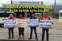 Muğla'da Tüvtürk İşçilerinin 500 Günlük Direnişi!