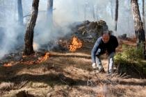 Seydikemer'de Orman Yangını!