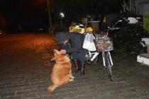 Bisikletiyle Sokak Sokak Dolaşıyor Hayvanları Besliyor