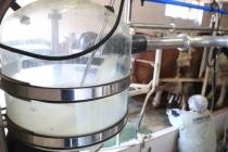 Süt Üreticileri Artan Maliyetler ve Sanayici Karşısında Ezildi!