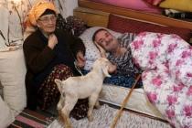 81 Yaşındaki Sultan Teyze 50 Yıldır Engelli Oğluna Bakıyor