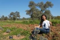Genç Girişimci Ailesinin Boş Arazisini Lavanta Bahçesine Çevirdi