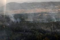 Milas'taki Orman Yangını 5 Saatte Kontrol Altına Alındı!