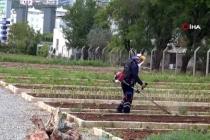 Yerel Tohumlar Toprakla Buluşuyor!