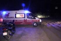 Bodrum'da, İki Kişiye Saldıran Köpek Sakinleştirici İğneyle Yakalandı