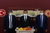 CHP'li Vekillerden Narenciye Üreticisi için Meclis'te Açıklama