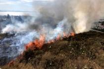 Datça'da Merkezde Çıkan Yangın Korkuttu!