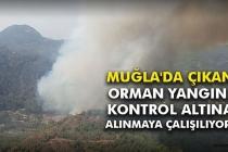Milas'ta Çıkan Orman Yangınında Çalışmalar Sürüyor!